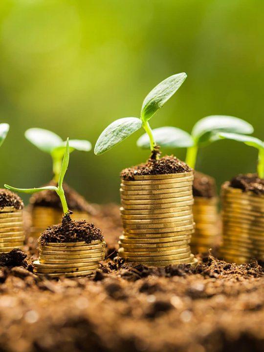 Focus sulla finanza sostenibile