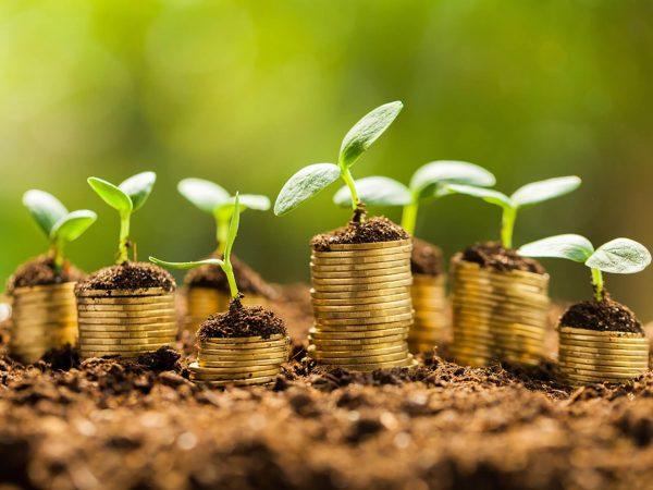 Focus on sustainable finance