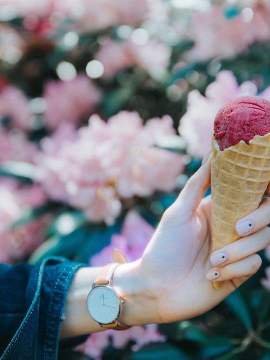 Tutti pazzi per il gelato