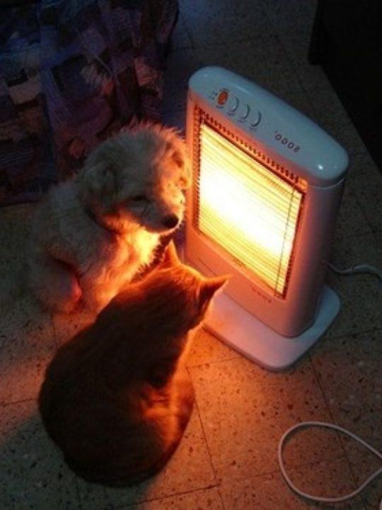 Soluzioni intelligenti per il riscaldamento domestico